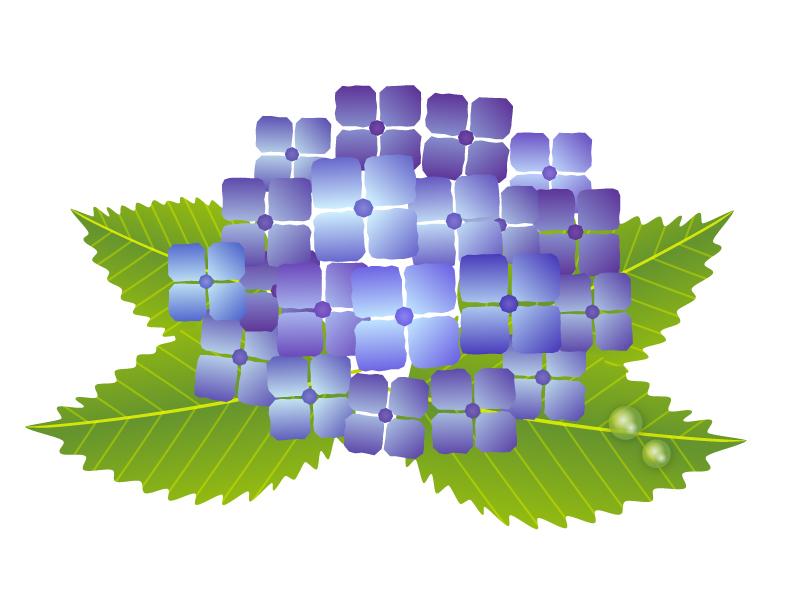 梅雨・紫陽花(あじさい)イラスト素材01