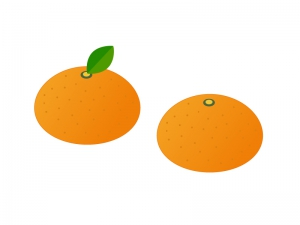 みかん・果物イラスト素材 無料ダウンロード