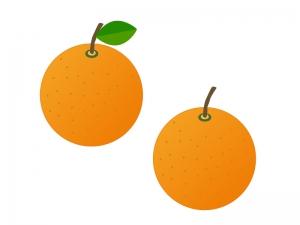 オレンジ・果物イラスト素材 無料ダウンロード
