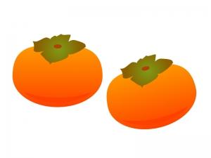 柿・果物イラスト素材