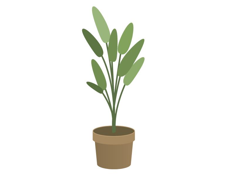 観葉植物イラスト素材01