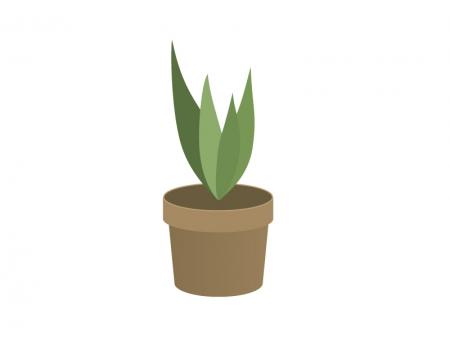 観葉植物イラスト素材02