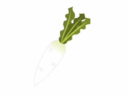 大根・野菜イラスト素材