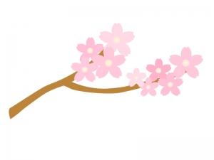 桜・春イラスト素材01