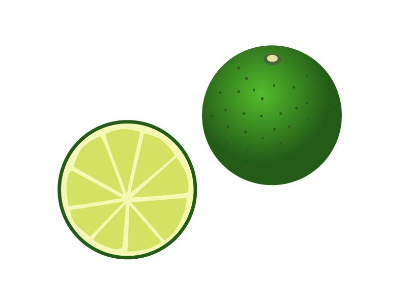 酢橘(すだち)イラスト素材