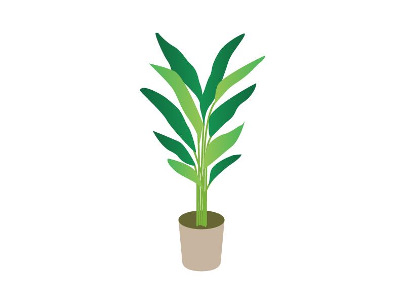 観葉植物イラスト素材03