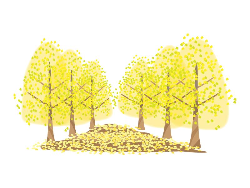 銀杏並木のイラスト素材
