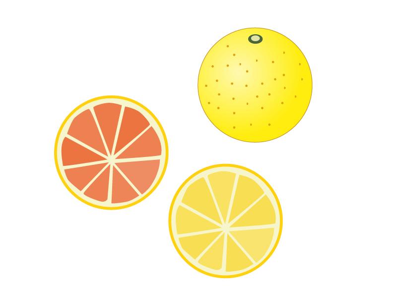 グレープフルーツのイラスト素材