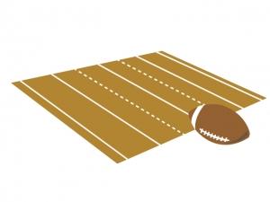 ラグビーボールとグラウンドのイラス素材