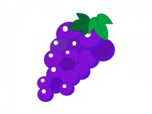 ぶどう葡萄グレープ果物イラスト素材 イラスト無料かわいい