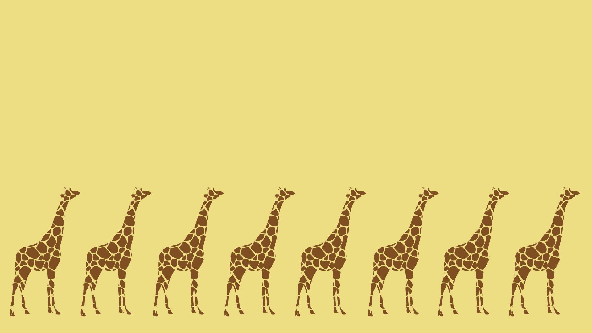 キリンが並んだ壁紙・背景素材 1,920px×1,080px