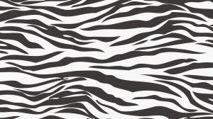 ゼブラ柄の壁紙・背景素材 1,920px×1,080px