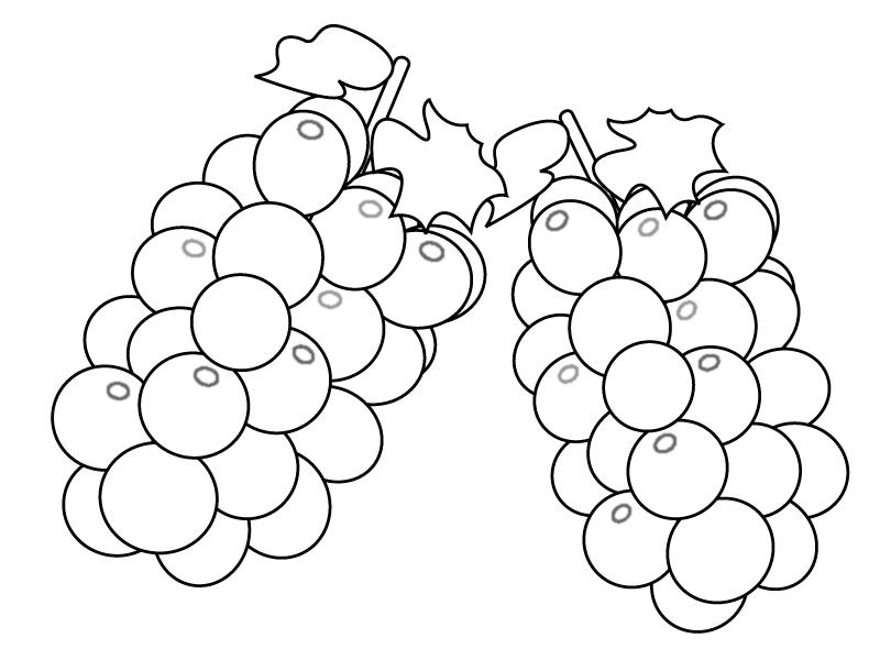 ぬりえ素材・ぶどう(葡萄)・マスカット・果物