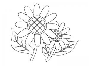ぬりえ素材・二輪のひまわりの花