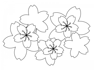 ぬりえ素材・桜の花びら・春