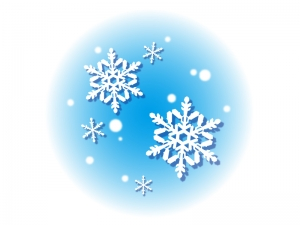 雪の結晶のイラスト素材02