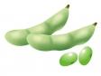 枝豆のイラスト素材