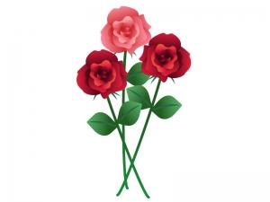 三輪のバラのイラスト素材