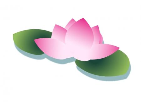 水辺に浮く蓮の花のイラスト素材