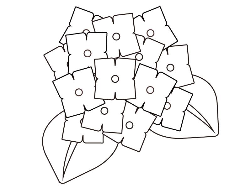 紫陽花のぬりえ(線画)イラスト素材