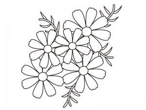 コスモス(秋桜)の群生のぬりえ(線画)イラスト素材