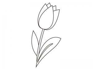 チューリップのぬりえ(線画)イラスト素材