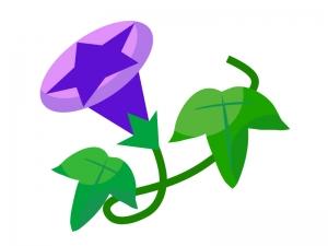 紫色の朝顔のイラスト