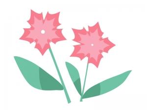 ピンク色の小花のイラスト