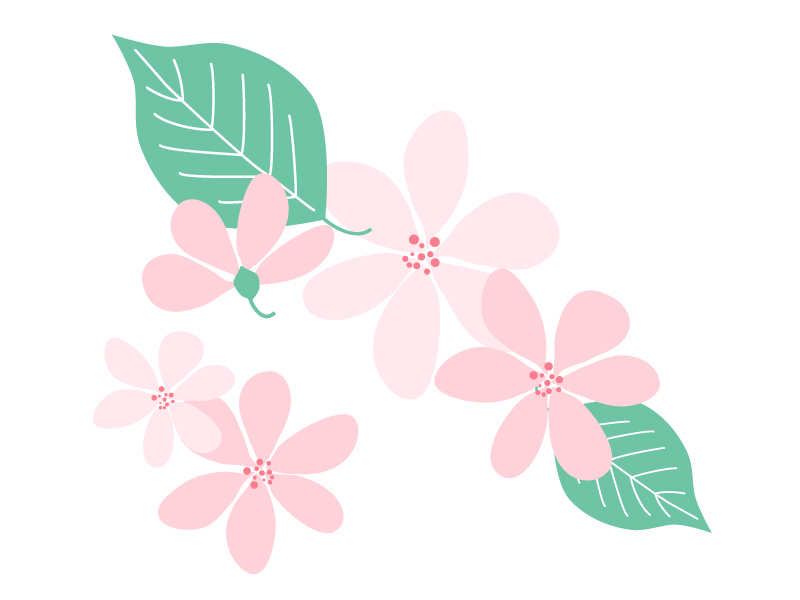 ピンク色の小花のイラスト02