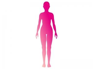 女性のシルエットのイラスト