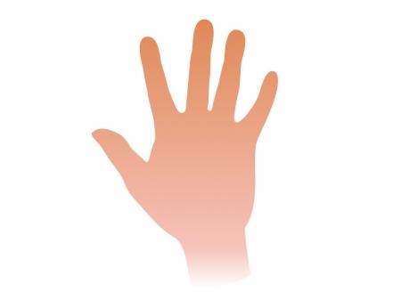広げている手のイラスト