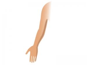 腕のイラスト