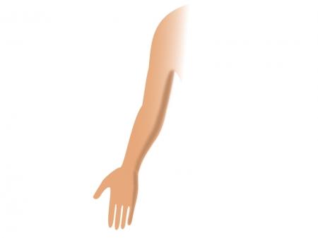 「腕 フリー素材」の画像検索結果