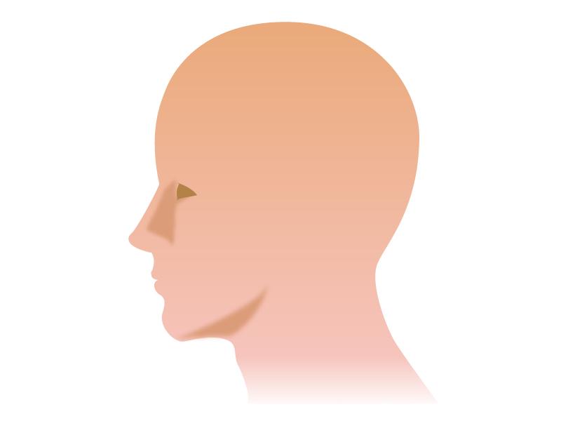 横を向いている顔のイラスト