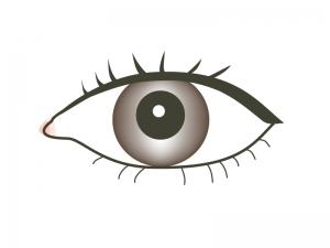 目のイラスト