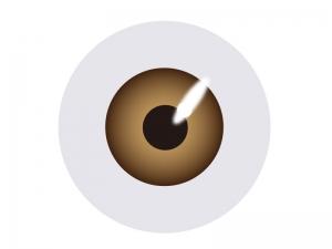 目玉(眼球)のイラスト