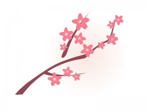 春・桜と枝のイラスト