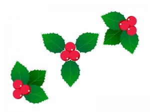 クリスマス・柊(ひいらぎ)のイラスト02