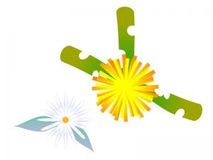 タンポポ(花と白い綿)のイラスト