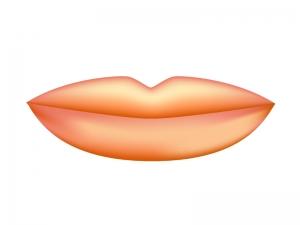 唇(くちびる)のイラスト