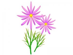 紫色のマーガレットのイラスト