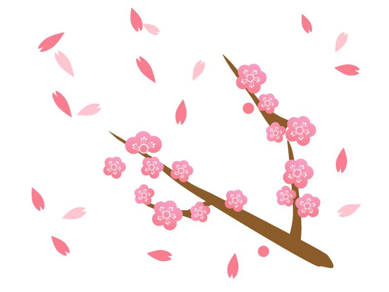 桜の花びらが舞っているイメージのイラスト