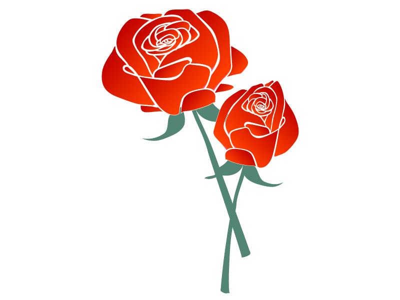 二輪の赤いバラのイラスト