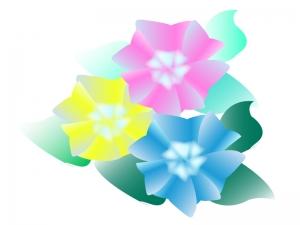 三色の紫陽花のイラスト
