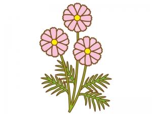 ピンク色のコスモス(秋桜)のイラスト