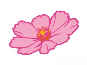 ピンク色のコスモス(秋桜)の花びらのイラスト