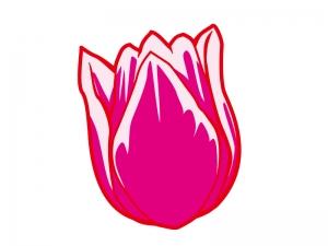 ピンク色のチューリップのイラスト02
