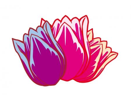 三輪のチューリップの花のイラスト