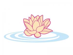 水に浮いて咲いているスイレンのイラスト