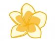 プルメリアの花びらのイラスト